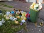 Mesmo Pagando IPTU Exorbitante e com Taxas Ilegais Moradores não tem Coleta de lixo