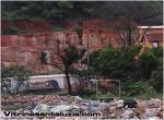 Flagrante de Máquinas da prefeitura de Santa Luzia jogando Lixo em Mata de preservação no cristina 2
